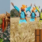 Harvest Festivals From Around The World