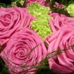 615x200-ehow-images-a06-67-da-meaning-dozen-roses-800x800