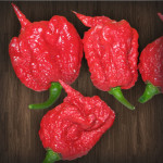 BIG LIST OF HOT PEPPERS